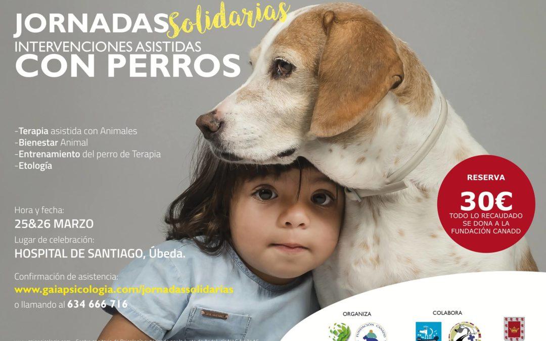 Jornadas solidarias Intervenciones asistidas con perros